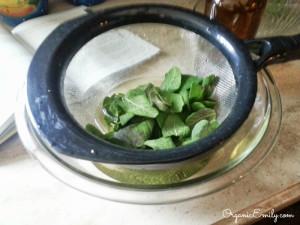 Strained Fresh Sage Tea