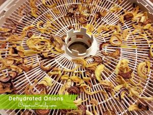 Dried Onions