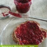 Raspberry Jam (with or without jalapenos)