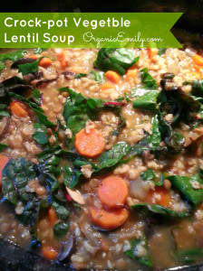 Crock-pot Vegetable Lentil Soup