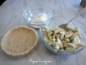 Brown Bag Apple Pie 1