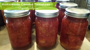 Homemade Canned Tomatoes