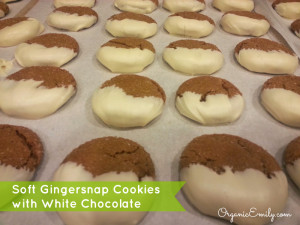 rp_Soft-Gingersnap-Cookies-with-White-Chocolate-300x2251.jpg