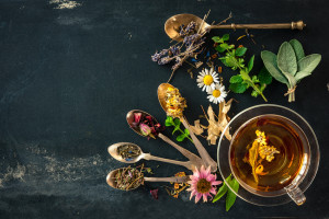 10-ancient-medicinal-herbal-remedies-that-actually-work